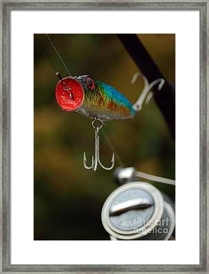 Surface Lure Framed Print by Paul Holman