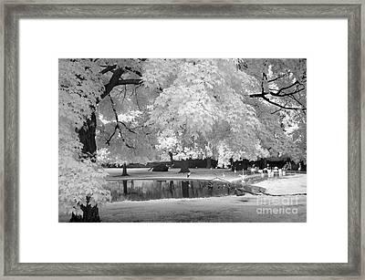 Surreal Dreamy Black White Flamingo Pond  Framed Print by Kathy Fornal
