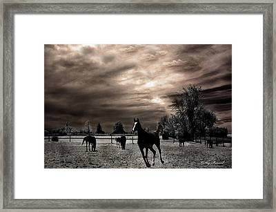 Surreal Horses Infrared Nature  Framed Print by Kathy Fornal