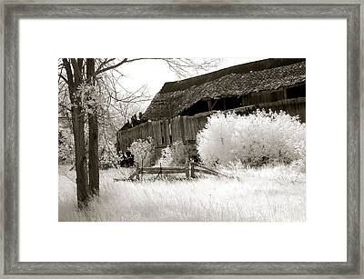 Surreal Infrared Sepia Michigan Barn Nature Scene Framed Print by Kathy Fornal