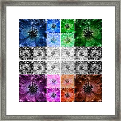 Surreal Poppies Framed Print by Marianna Mills