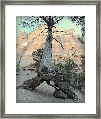 Suspended In Time.. Framed Print by Al  Swasey