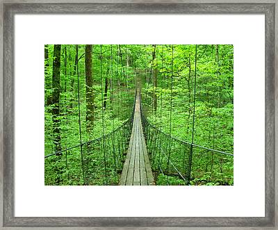 Suspension Bridge Framed Print by Daniel Muller