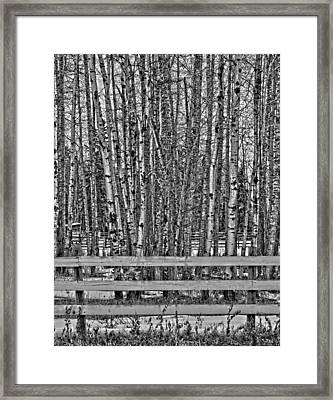 Susys Ranch  Framed Print by Jerry Cordeiro