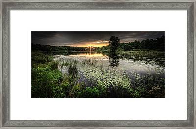 Swamp Sunrise Framed Print by Everet Regal