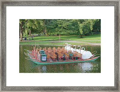 Swan Boat In Boston Public Garden Framed Print by Clarence Holmes