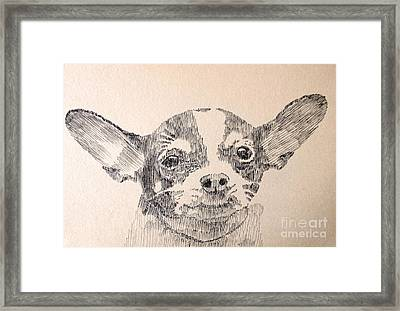 Sweet Chi Framed Print by Robbi  Musser