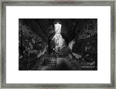 Sweet Deams Framed Print by Andrew Paranavitana