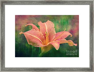 Sweet Lilith Framed Print by Angela Doelling AD DESIGN Photo and PhotoArt