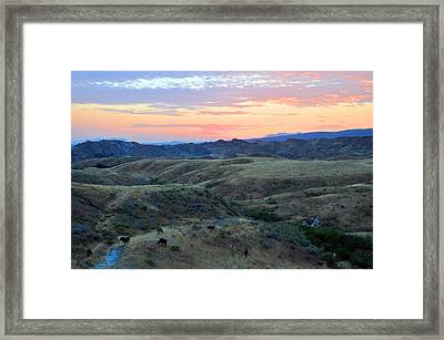 Sweet So Cal Sunset Framed Print by Lynn Bauer