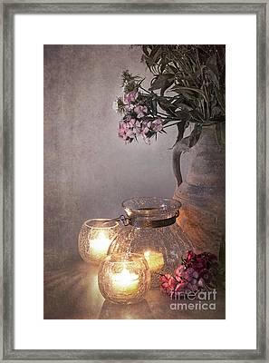 Sweet Williams Faded. Framed Print by Jane Rix