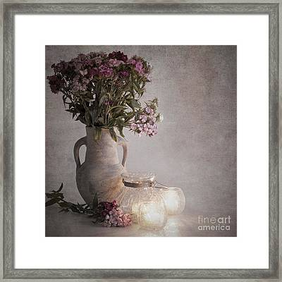 Sweet Williams Vintage Framed Print by Jane Rix