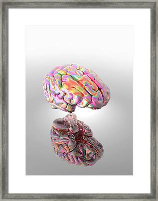 Synaesthesia, Conceptual Artwork Framed Print by Victor Habbick Visions