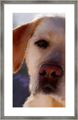 Take Me Framed Print by Robert Smith