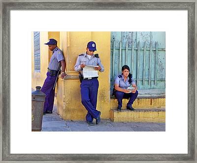 Taking A Break Framed Print by Lynn Bolt