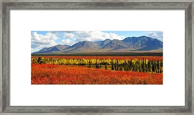 Talkeetna Mountains Moment Framed Print by Alan Lenk