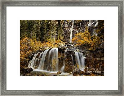Tangle Falls, Jasper National Park Framed Print by Keith Kapple