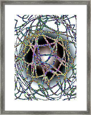 Tangled Web Framed Print by Will Borden
