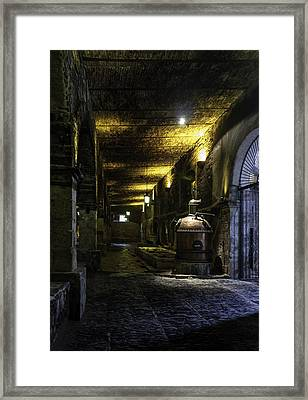 Tequilera No. 2 Framed Print by Lynn Palmer