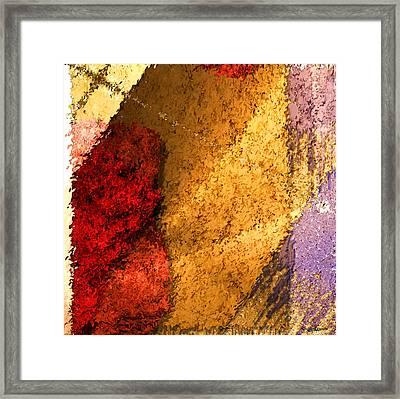 Textile 2 Framed Print by Robert Matson