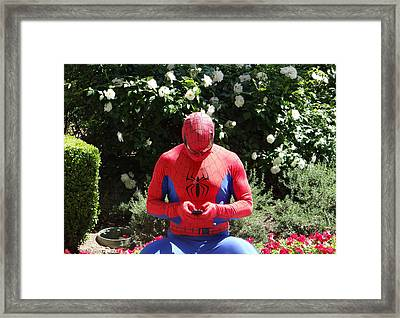 Texting On The Web Framed Print by Michael Wilcox