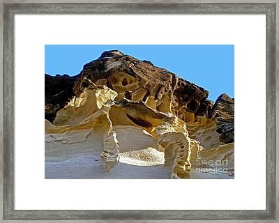 The Art Of Nature Framed Print by Kaye Menner