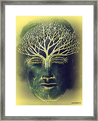 The Awakening Of The Self-awareness Equinox Framed Print by Paulo Zerbato
