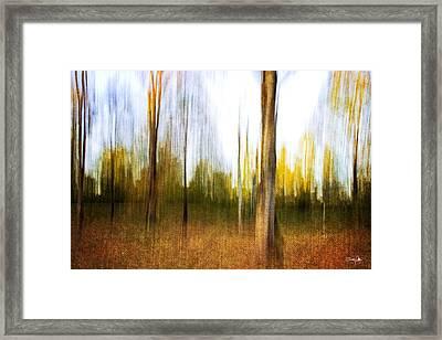 The Backyard Framed Print by Scott Pellegrin