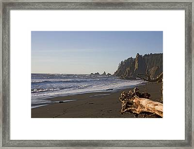 The Beach In Olympic National Park Framed Print by Taylor S. Kennedy