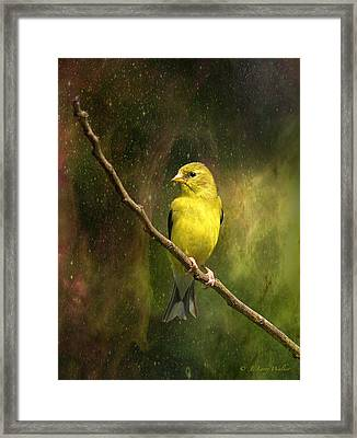 The Beauty Of Youth Framed Print by J Larry Walker