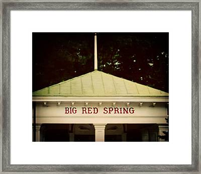 The Big Red Spring Framed Print by Lisa Russo