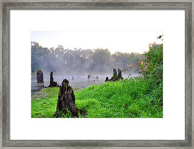 The Bog Framed Print by Peter  McIntosh