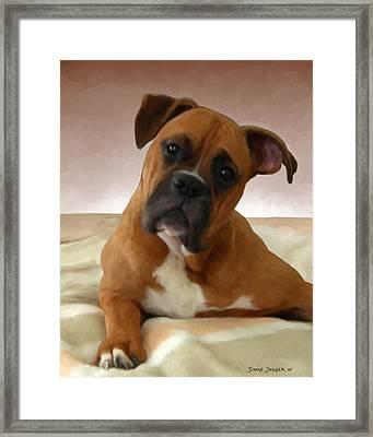 The Boxer Framed Print by Snake Jagger