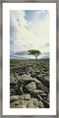 The Burren, On Kinvara Side, Co Clare Framed Print by The Irish Image Collection