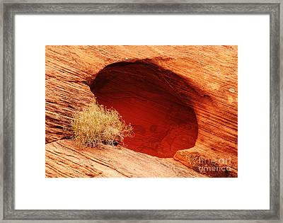 The Cave Framed Print by Vivian Christopher