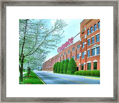 The Colgate-palmolive Building I Framed Print by Steven Ainsworth