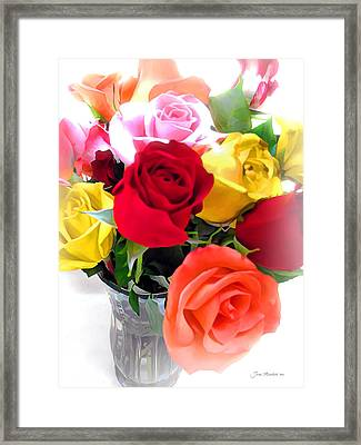 The Color Of A Rose Framed Print by Joan  Minchak