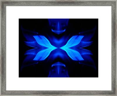 The Coming Together Framed Print by Danny Lally