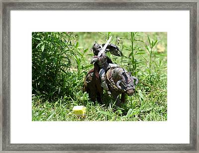 The Confrontation Framed Print by Don Youngclaus