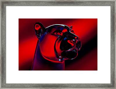 The Cougar Framed Print by David Patterson