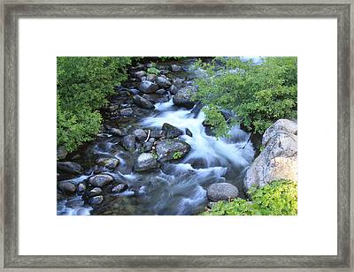 The Creek Framed Print by Nance Eakins