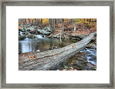 The Crossing Framed Print by JC Findley