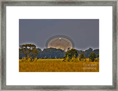 The Dish Framed Print by Joanne Kocwin
