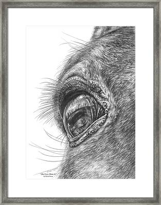 The Eyes Have It - Horse Portrait Closeup Print Framed Print by Kelli Swan