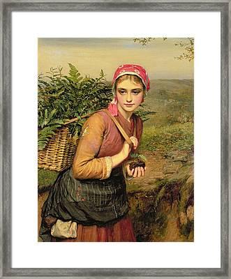 The Fern Gatherer Framed Print by Charles Sillem Lidderdale