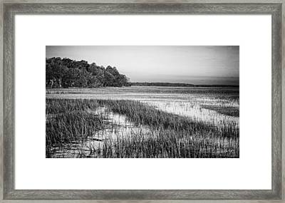 The Flats Framed Print by Phill Doherty
