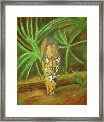 The Florida Panther  Framed Print by John Keaton