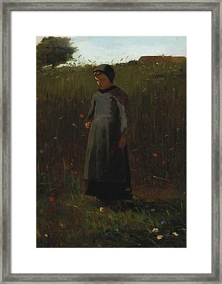 The Flowers Of The Field Framed Print by Winslow Homer