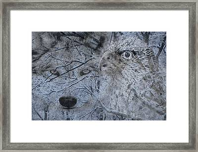 The Forest Has Eyes Framed Print by Yvonne Scott