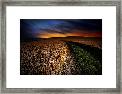 The Forgotten Path Framed Print by John Chivers